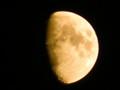 旧暦、十月十日。「十日夜(とおかんや)」の月。(26.12.1)(17:19)