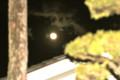 「落葉松と一位の木」の間に、お月さま。(27.1.6)(19:06)