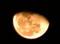 「豆太の月」・「霜月二十日」のお月さま。(27.1.10)(22:30)