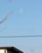 西の空に残る、「昨夜・霜月二十日」の月。(27.1.11)(9:18)