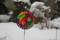冬型の雪が舞う。(27.1.17)