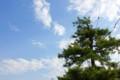 季節外れの雲が広がる。(27.5.26)