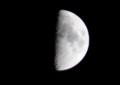 「卯月九日」・上弦のお月さま。(27.5.26)
