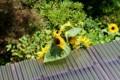 庇の上にまで伸びて、頭花を着けた「ヒマワリ(向日葵)」(