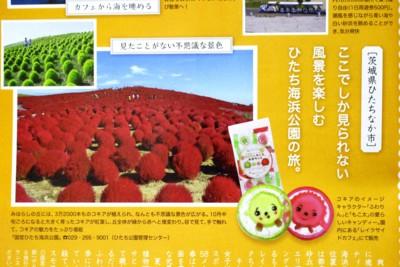 f:id:yatsugatake:20151022190121j:image