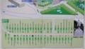 国会議事堂、都道府県提供の樹木。(27.10.22)