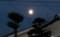 東の空に昇った「長月十四日」のお月さま。(27.10.26)(17:15)