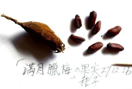 f:id:yatsugatake:20151226103149j:image