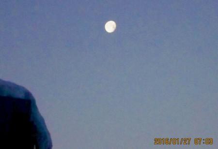 昨夜・「臘月十七日」の残月。(28.1.27)(7:03)