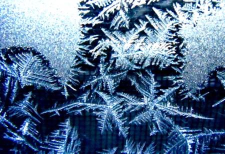 窓ガラスに「霜の華」が…。(28.1.27)