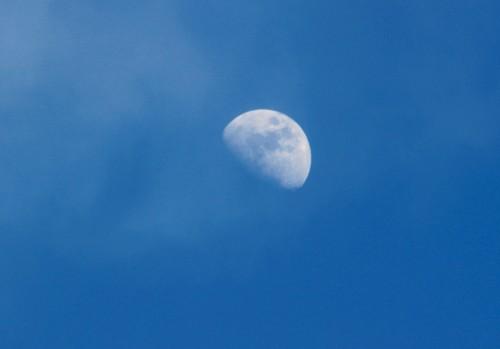 東の空に昇った、「正月十日」のお月さま。(28.2.17)(15:42)