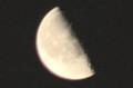 「弥生二十四日」・「下弦」のお月さま。(28.4.30)(1:42)