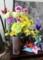 玄関を飾る、お祝いの花。