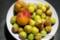 杏品種・「紅浅間」と、「竜峡小梅」(28.6.27)