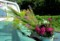 「盆花」を採取し、軽トラに…。(28.8.12)