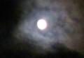 雲間に「七月・文月十三日」のお月さま、(28.8.15)