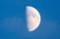 「八月十日」のお月さま。(28.9.10)(17:45)
