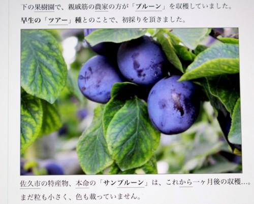 f:id:yatsugatake:20160919101645j:image