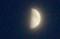 九日・上弦のお月さま(28.10.9)(17:33)