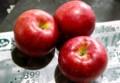 「シナノスイート」りんごが旬。(28.10.23)