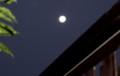 12時間後の「十六夜の月」(28.11.16)(6:09)
