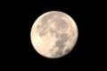 12時間後の「十六夜の月」。(28.11.16)(6:09)