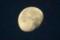 「昨夜・十月十八日」のお月さま。(28.11.18)(6:07)