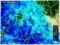 「雨雲レーダー画像」28.11.19)