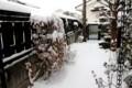 積雪、すでに15センチほど…。(28.11.24)(7:28)