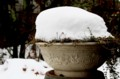 融けずに残った「雪の帽子」。(28.11.26)
