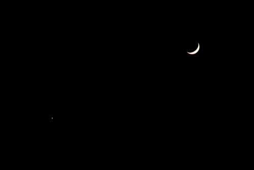 「宵の明星・金星」と、「霜月五日」のお月さま。(28.12.3)(17:27)