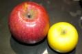 「リンゴ(林檎・苹果)」(28.12.12)