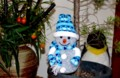 「雪だるま」・「紫宝華」がお相伴。(28.12.13)