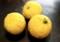 冬至の「柚子」。(28.12)