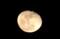 「霜月十八日」・「居待月」の出。(28.12.16)(18:46)