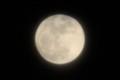 「十二月十五日」、「満月・望2時間前)」のお月さま。(29.112)(18:16)