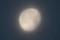 雪雲を透かして、昨夜・十七日のお月さまが…。(29.1.15)(6:50)