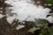 屋根から滑り落ちた「氷雪」。(29.1.30)