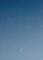 明るいうちに見えた、「四日の月と金星」(29.1.31)(17:13)