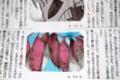 新聞連載小説・「愛なき世界」(29.1.31)
