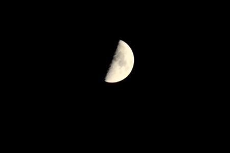 南中する「正月八日」の月・上弦の月。(29.2.4)(17:58)