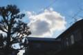 冬型、くっきりと青空が…。(29.3.24)(7:35)
