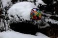 庭先に、春の大雪…。(29.4.1)
