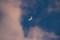 夕焼けの雲間に、「四月六日」のお月さま。(29.5.1)(18:26)