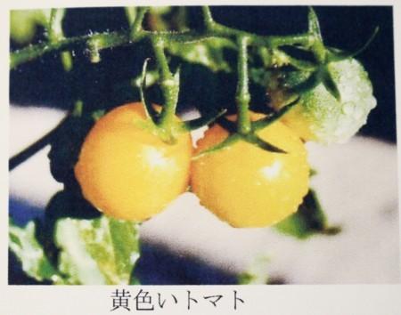 f:id:yatsugatake:20170603183507j:image