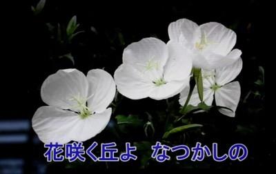 f:id:yatsugatake:20170626074514j:image