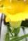 「坊ちゃんカボチャ」に雌花も咲いて…。(29.7.4)