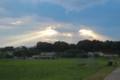 野良回り、夕焼けが美しい。(29..7.17)