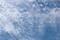 空には、「鰯雲」が広がって。(29.8.5)