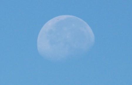 西空福く、白いお月さま。(29.8.12)(8:02)